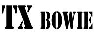 TX Bowie