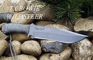 TX Bowie de Wildsteer
