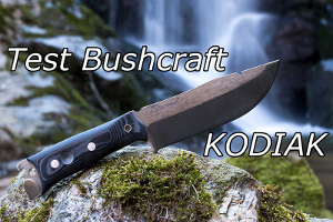 Kodiak de Wildsteer